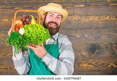 Farmer straw hat deliver fresh vegetables. Farmer with homegrown vegetables in basket. Man bearded farmer presenting eco vegetables wooden background. Fresh organic vegetables in wicker basket.