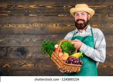 Farmer straw hat presenting fresh vegetables. Farmer with homegrown vegetables in basket. Man bearded farmer presenting eco vegetables wooden background. Fresh organic vegetables in wicker basket.