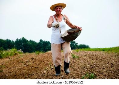 Farmer Throwing Fertilizer by Hand