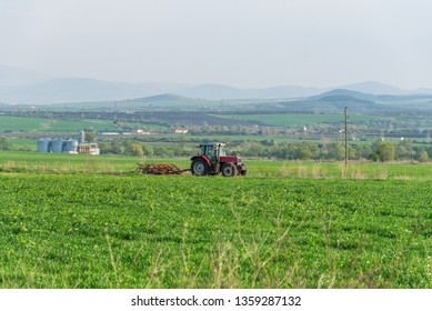 Farmer in tractor preparing land with seedbed cultivator.