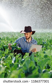 Farmer using digital tablet computer on sprinkler system background. A young agronomist sits on a plantation and checks quality of the crop.