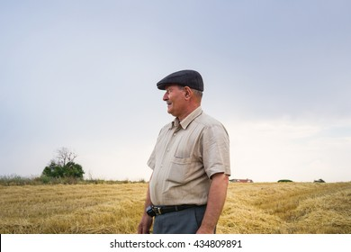 Farmer is waiting in the middle of the field