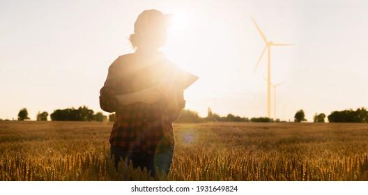 Farmer in a wheat field at sunset.