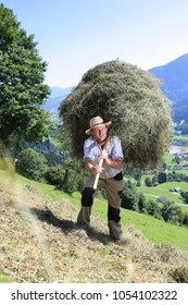 A Farmer wirh  fork over shoulder haymaking
