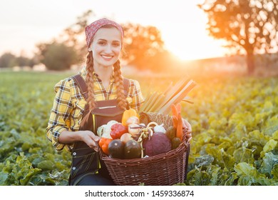 Farmer woman in the country going to market with vegetable basket fresh from the harvest