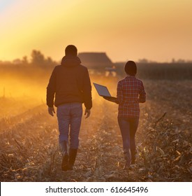 Farmer woman with laptop and landowner walking and talking on field with tractor working in background at sunset