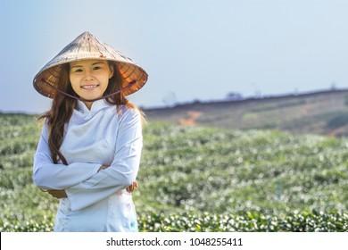 Farmer woman in the tea farm.Women wearing Vietnamese uniforms with Non La Vietnam Hat.vietnam girl picking green tea leaf in morning.organic farm