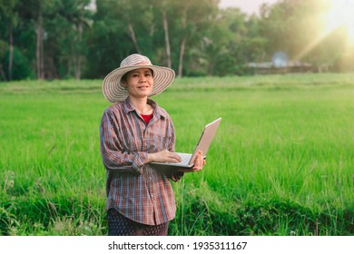 Farmer women holding laptop on blurred rice field backgroun of organic agriculture in countryside, happy Asian girl smile for use technology to farmland, people working on daytime in field of rural