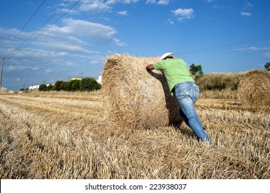 Farmer working at his farmland at the end of summer