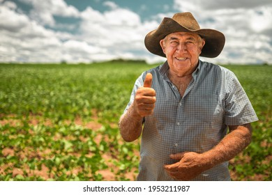 Farmer working on soybean plantation. Elderly man looking at camera with thumbs up