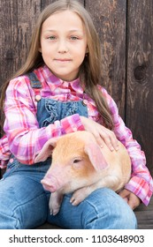 Farmer's children are playing with pig