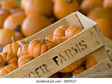 A farmer's crate of small pumpkins or gourds for sale at a market.