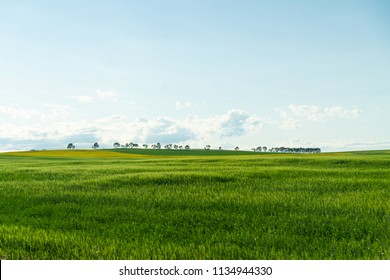 Farmers Fields in Canada
