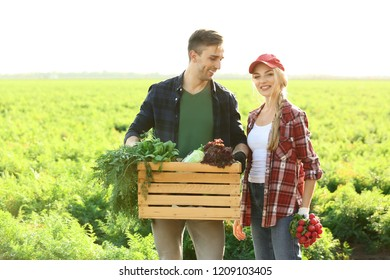 Farmers with gathered vegetables in field