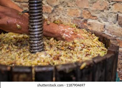 Farmer's hand move white must in a wine press