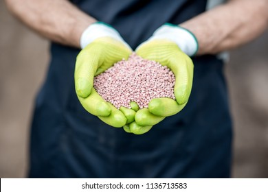 Farmer's hands in the green working gloves holding mineral fertilizers, close-up view