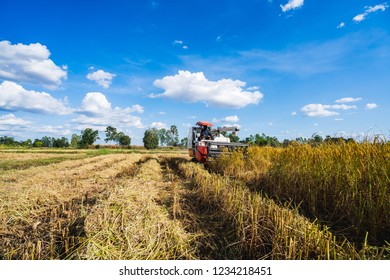 Farmers harvester machine to harvest rice field working in Thailand