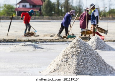 Farmers are harvesting salt in the salt fields, south of Thailand.