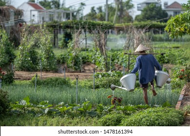 Farmers in local village with no chemical products at all, Vietnam