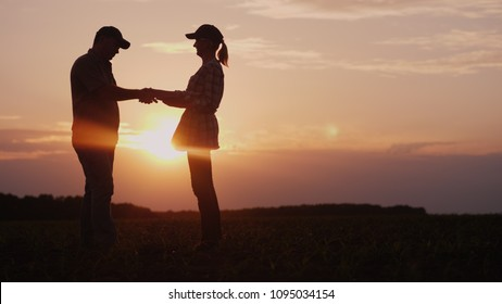 Farmers man and woman communicate in the field at sunset. They use a tablet, then shake hands. Deal in agribusiness concept
