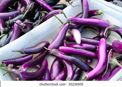 Farmers market bins filled with fresh slender purple japanese eggplant.