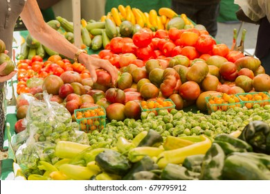 Farmer's market produce stand with woman's hand holding an heirloom tomato. Horizontal photo includes cherry tomatoes, brussels sprouts, zucchini, squashes, gypsy peppers and bell peppers