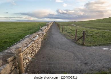 Farmer's Path in County Clare, Ireland