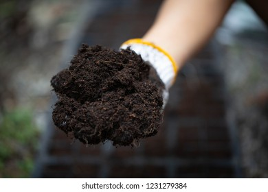 The farmers prepare the soil for planting