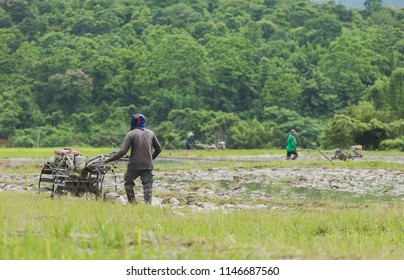 Farmers in Thailand prepare the rice field.
