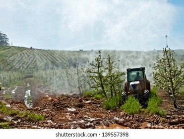 Farmers working in orchards