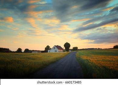 farmhouse among fields in Poland;