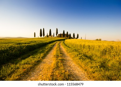 Farmhouse and cypress trees, Tuscany, Italian countryside