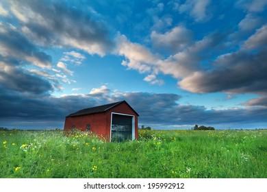 farmhouse on flowering meadow over blue sky, Netherlands