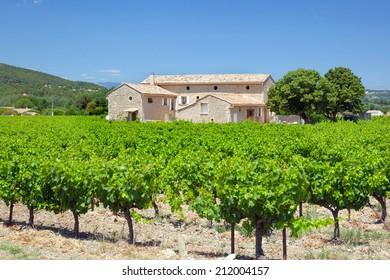 farmhouse with vineyard
