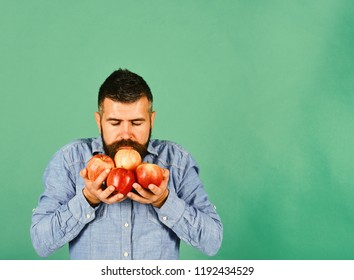 Farming and autumn products concept. Guy holds homegrown harvest. Man with beard smells red fruit isolated on green background, copy space. Farmer with dreamy face and hands full of fresh apples