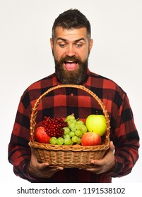 Farming and gardening concept. Guy holds homegrown harvest. Farmer with excited face presents apples, grapes and cranberries. Man with beard holds basket with fruit isolated on white background
