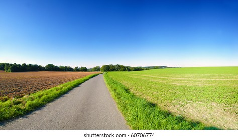 Farming landscape with clear blue sky. Panoramic picture with country road and fields in Germany.