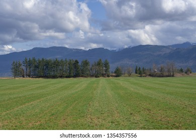 Farmland in Abbotsford, British Columbia