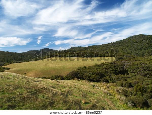 Farmland, around Puponga, Farewell spit, South island, New Zealand