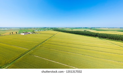 Farmland to the drone in the flat land