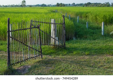 farmland with fence in the meadows