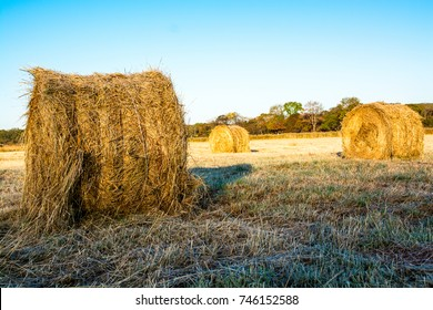 Farmland with haystacks in autumn. Grass plated by hoarfrost.