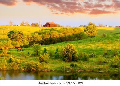 Farmland landscape in Central Kentucky