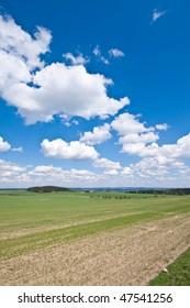 farmland landscape in the springtime