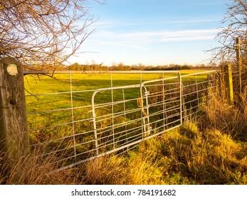 farmland metal farm gate field closed locked agriculture nature landscape confined; essex; england; uk