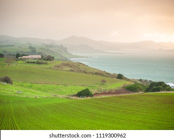 Farmland on coastline. Tollymore Rd Viewpoint, Table Cape, Tasmania, Australia