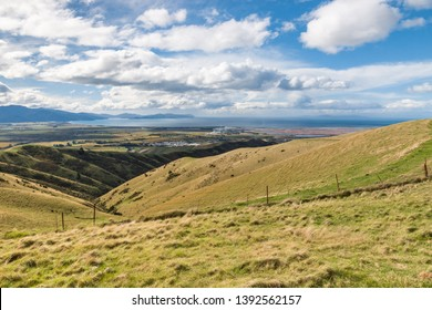 farmland pasture on Wither Hills in Blenheim with Cook Strait in distance, South Island, New Zealand