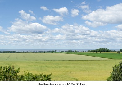 Farmland at the southern part of the island Oland in Sweden, World Heritage  Agricultural Landscape of Southern Oland