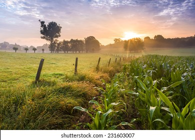 Farmland sunrise