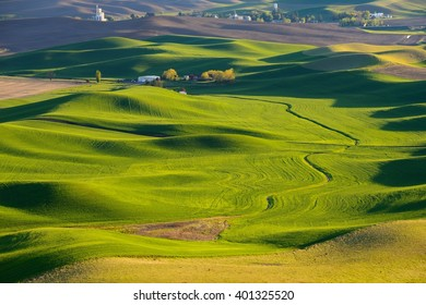 The farmland at sunset. Palouse Hills in Washington, United State of America.
